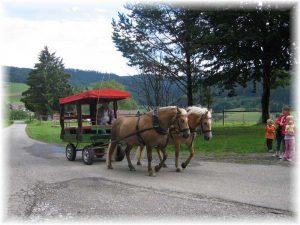 Unterwegs mit Franz